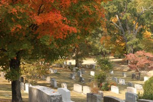 Grave Care and Maintenance during Autumn
