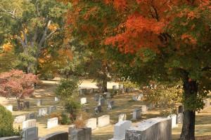 Autumn Grave Maintenance
