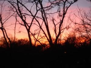 grave yard sun set