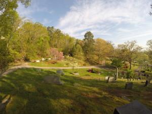 Cemetery Spring Flowers